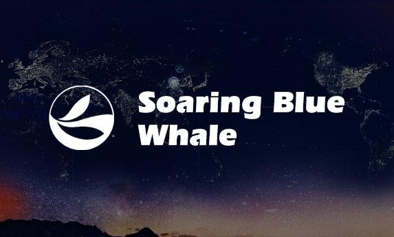 蓝鲸腾飞英文站