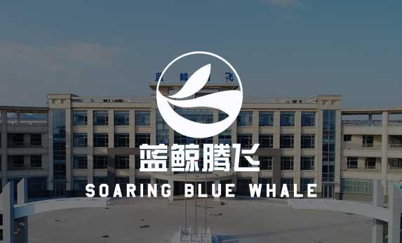 山东蓝鲸腾飞科技有限公司